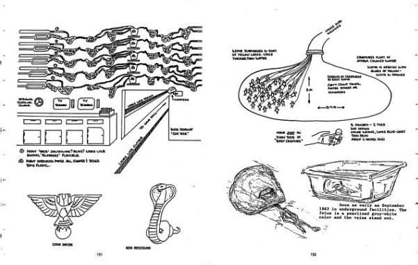 Проект Арамис - инопланетные формы жизни. НЛО